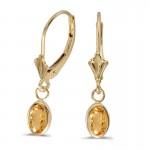 14k Yellow Gold Oval Citrine Bezel Lever-back Earrings