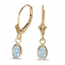 14k Yellow Gold Oval Aquamarine Bezel Lever-back Earrings