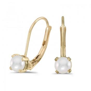 14k Yellow Gold Pearl Lever-back Earrings