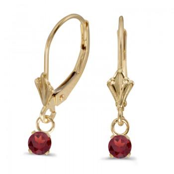 14k Yellow Gold Round Garnet Lever-back Earrings